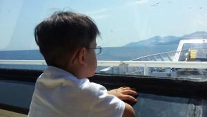 Pe feribot